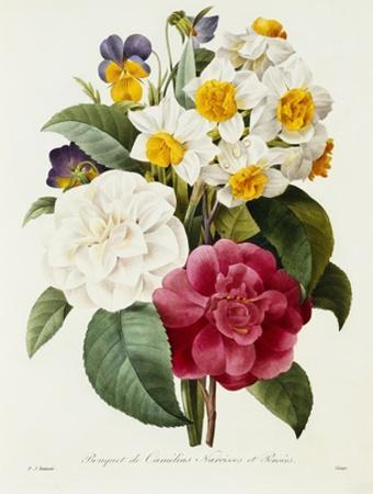Bouquet of Camellias, Narcissus, and Pansies by Pierre-Joseph Redouté