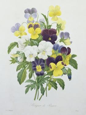 Bouquet of Pansies, Engraved by Victor, from 'Choix Des Plus Belles Fleurs', 1827 by Pierre-Joseph Redouté