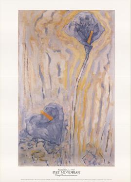 Aronskelken by Piet Mondrian