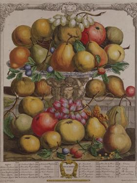 December, from 'Twelve Months of Fruits' by Pieter Casteels