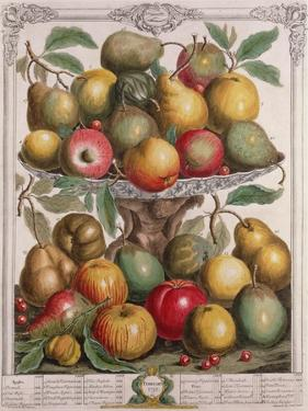 February, from 'Twelve Months of Fruits' by Pieter Casteels