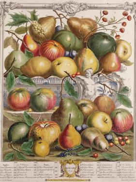 January, from 'Twelve Months of Fruits' by Pieter Casteels