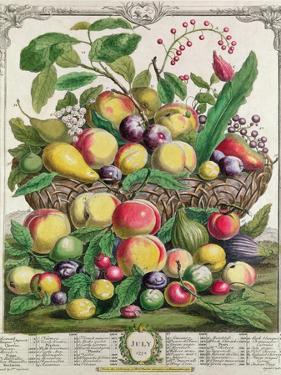 July, from 'Twelve Months of Fruits' by Pieter Casteels