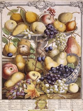 November 1732, Showing Seasonal Apples, Pears, Grapes Etc, 1732 by Pieter Casteels