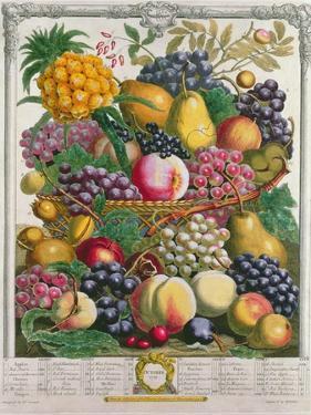 October, from 'Twelve Months of Fruits', by Robert Furber by Pieter Casteels