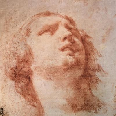 Head Study of a Woman Looking Up, 17th Century by Pietro da Cortona