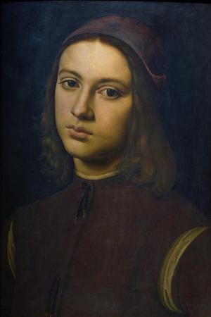 Portrait of a Young Man, 1495