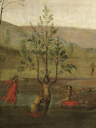 Tree-Woman, Detail of Struggle Between Love and Chastity, 1503-1505