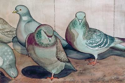 https://imgc.allpostersimages.com/img/posters/pigeons_u-L-PJC9QJ0.jpg?p=0