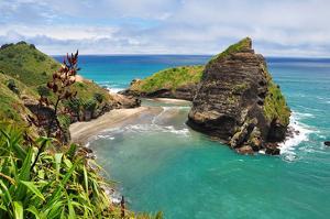Piha Beach Auckland Newzealand