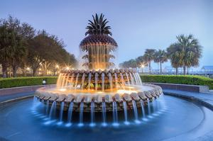 Pineapple Fountain Charleston