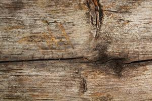 Barn Wood by pink candy
