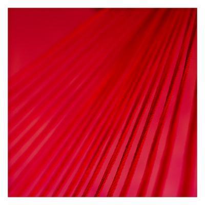 https://imgc.allpostersimages.com/img/posters/pink-shade-ii_u-L-F9353L0.jpg?artPerspective=n