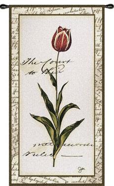 Pink Tulip II