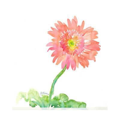 Pink Watercolor Gerbera Daisy on Curved Stem