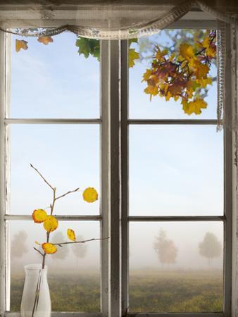 Autumn Landscape Viewed Through Window by PinkBadger