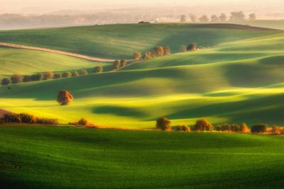 Green fields by Piotr Krol (Bax)