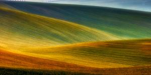 Spring Fields by Piotr Krol (Bax)