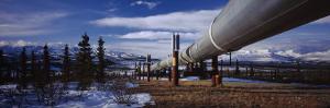 Pipeline Passing Through a Snow Covered Landscape, Trans-Alaskan Pipeline, Alaska, USA