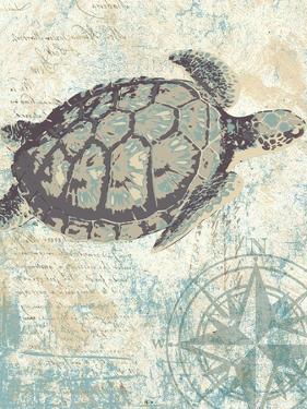 Sea Turtles I by Piper Ballantyne