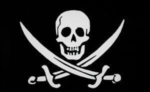 Pirate Flag of Calico Jack Rackham