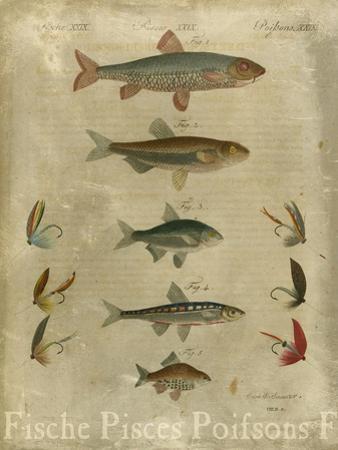 Pisces Composition I