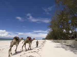 Diani Beach, Near Mombasa, Kenya, East Africa, Africa by Pitamitz Sergio