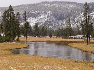 Elk, Firehole River, Yellowstone National Park, UNESCO World Heritage Site, Wyoming, USA