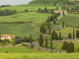 Road from Pienza to Montepulciano, Monticchiello, Val D'Orcia, Siena Province, Tuscany, Italy by Pitamitz Sergio