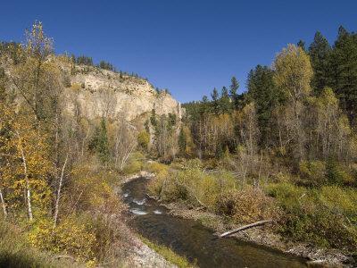 Spearfish Canyon, Black Hills, South Dakota, United States of America, North America