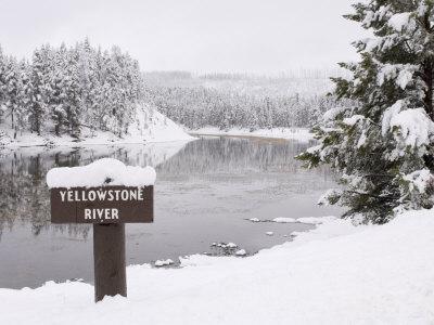 Yellowstone River, Yellowstone National Park, UNESCO World Heritage Site, Wyoming, USA