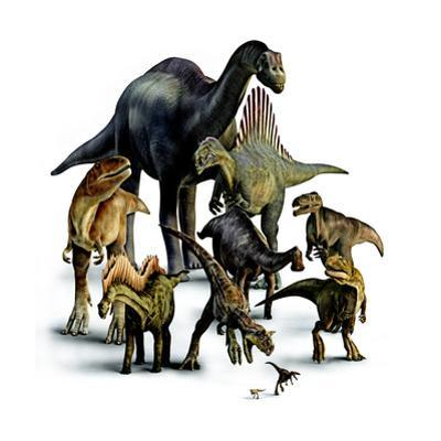 A Composite of Dinosaurs That Lived in the Southern Hemisphere by Pixeldust Studios