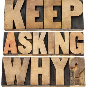 Keep Asking Why by PixelsAway