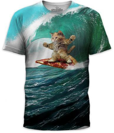 Pizza Surfing Cat