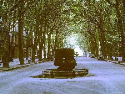https://imgc.allpostersimages.com/img/posters/plane-trees-shade-wide-boulevard-of-cours-mirabeau-in-aix-en-provence_u-L-P3OTIX0.jpg?p=0