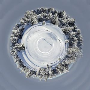 Planet of Beautiful Fir Trees Covered with Snow in the Jura Mountains, Switzerland