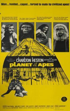 Planet Of The Apes Poster 1968