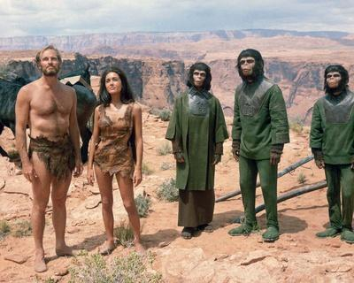 https://imgc.allpostersimages.com/img/posters/planet-of-the-apes_u-L-PJSMWF0.jpg?artPerspective=n