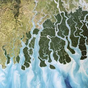Ganges River Delta, India by PLANETOBSERVER