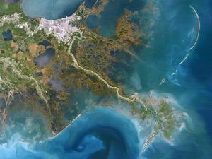 Mississippi Delta, Satellite Image by PLANETOBSERVER