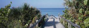 Plants on Both Sides of a Boardwalk, Caspersen Beach, Venice, Florida, USA