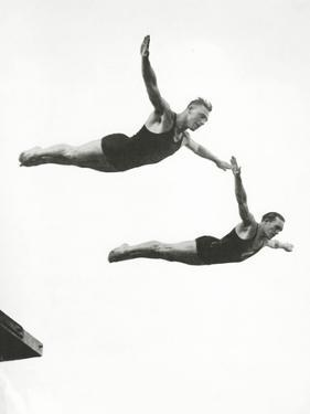 Platform Diving at the Berlin Olympic Games, 1936