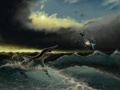 Pliosaurus Irgisensis Attacking a Shark