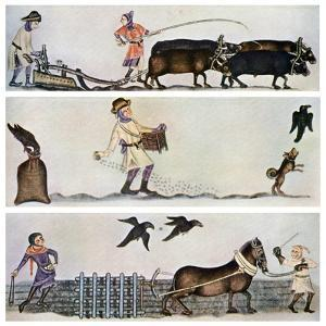 Ploughing, Sowing, and Harrowing, C1300-1340, (C1900-192)