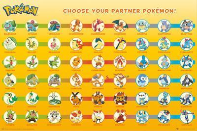 Pokemon Partner Pokemon