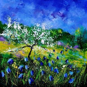 Appletree 7741 by Pol Ledent