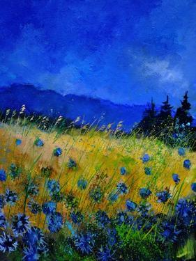 Blue Cornflowers 4550 by Pol Ledent