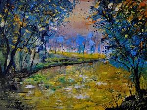Magic Pond 4530 by Pol Ledent