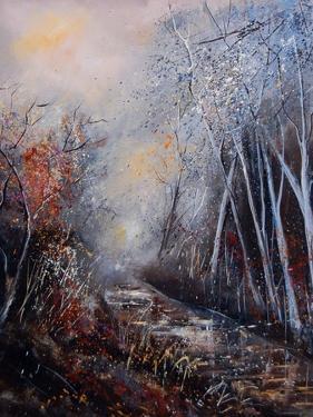 Misty Little Brook by Pol Ledent