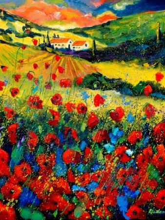 Poppies In Tuscany by Pol Ledent